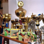 Cupe si medalii Canisa von Bienenwald